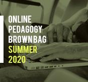 Online Pedagogy Brown Bag Series