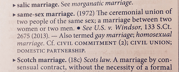 Illinois Who defines marriage – Domestic Partnership Agreement