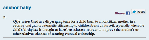 anchor baby revised definition