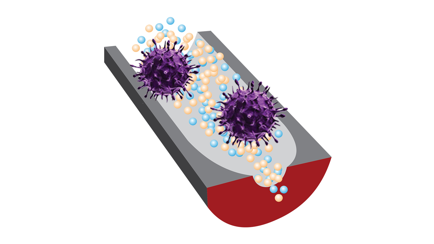 A new sensor can distinguish infectious viruses from noninfectious ones thanks to selective DNA fragments and sensitive nanopore technology. Image courtesy of Ana Peinetti