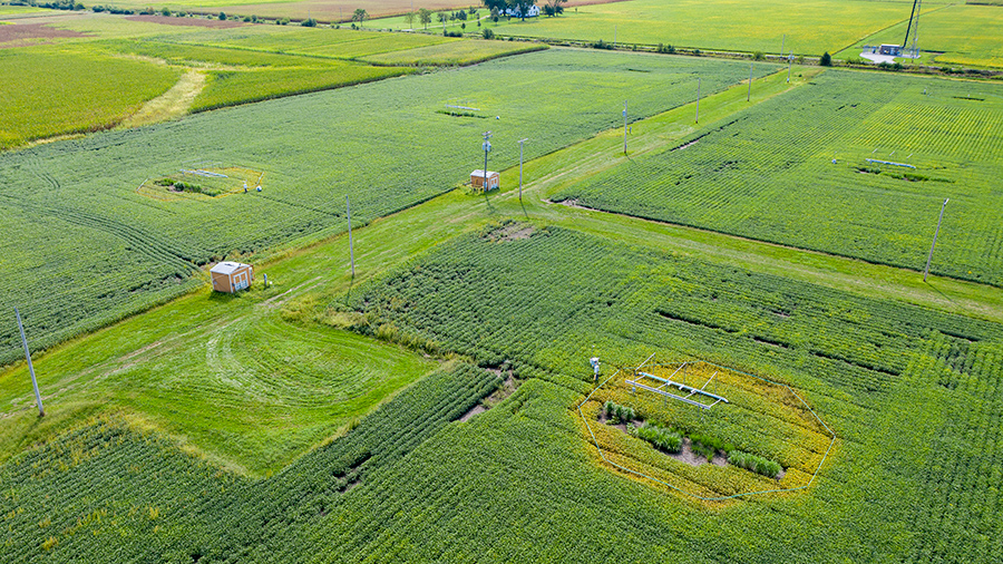 aerial image of the SoyFACE research facility. Credit: James Baltz/University of Illinois
