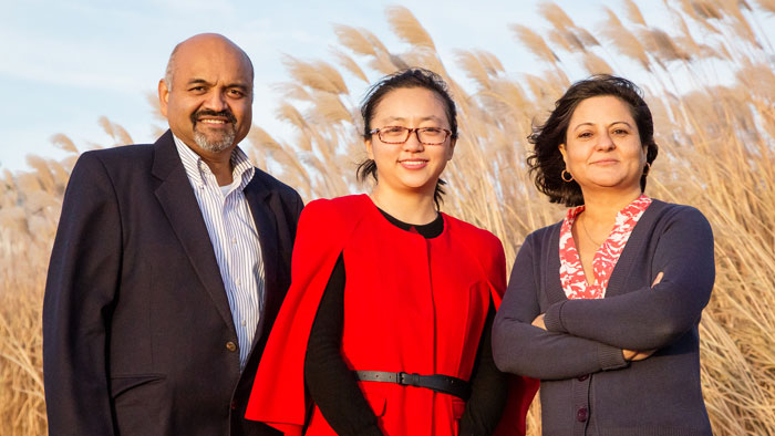 image of atmospheric sciences professor Atul Jain, graduate student Yang Song, and agricultural and consumer economics professor Madhu Khanna