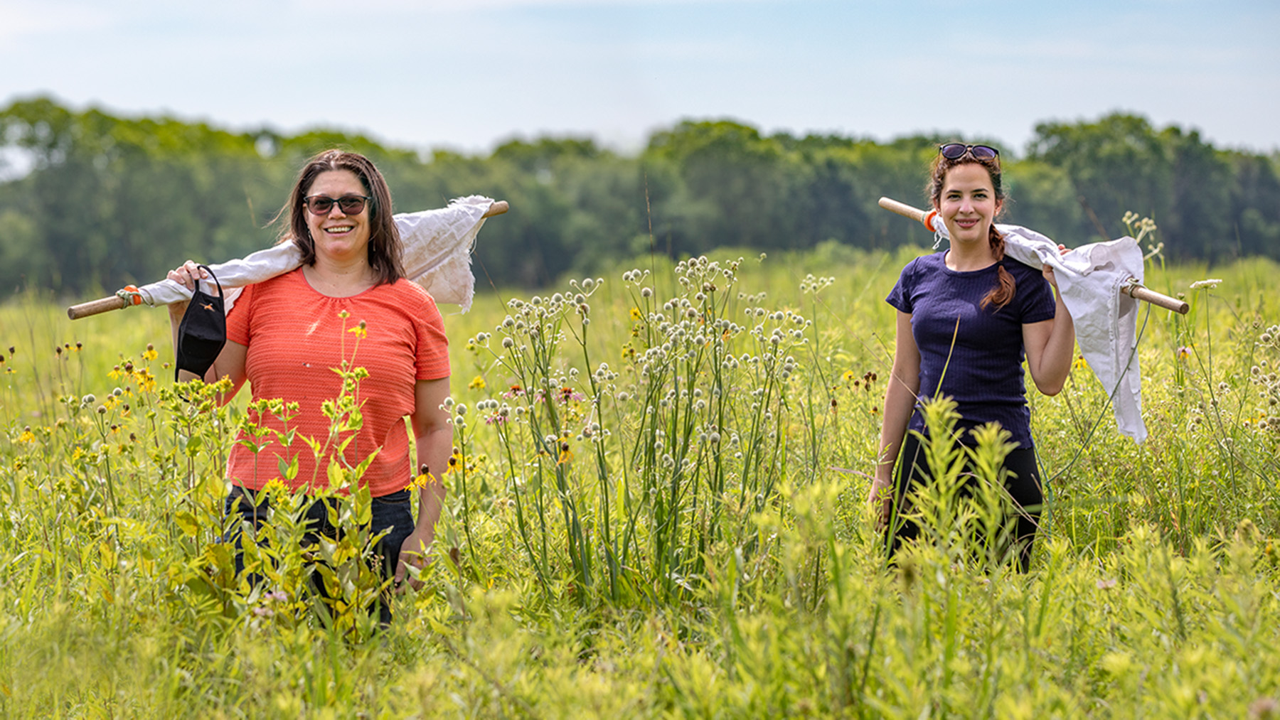 1.Illinois Natural History Survey vector ecologist Holly Tuten, left, graduate student Erica Hernandez and their colleagues discovered that Lone Star ticks in two Illinois counties were infected with the Heartland virus. Photo by Fred Zwicky