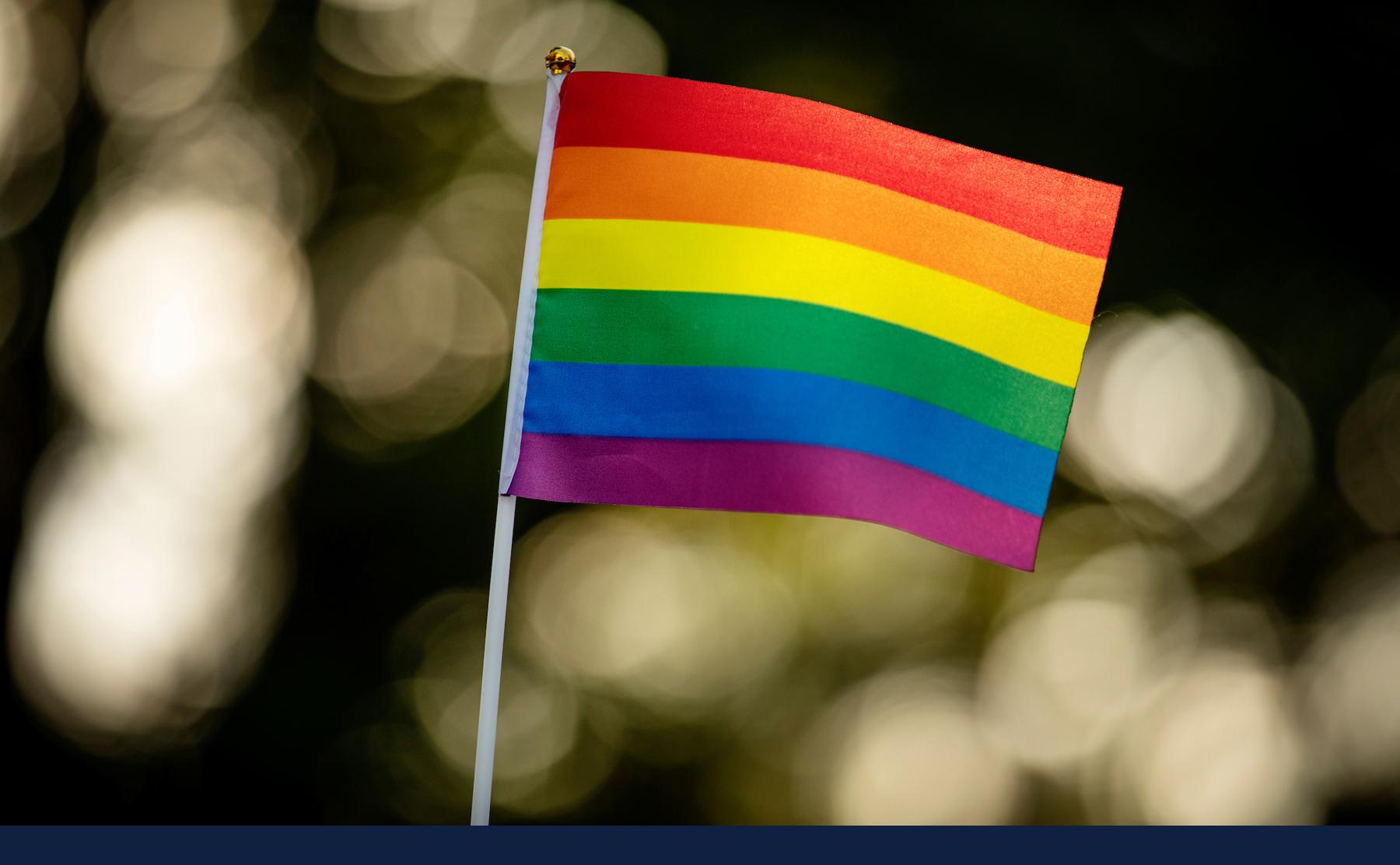 LGBTQ+ rainbow flag