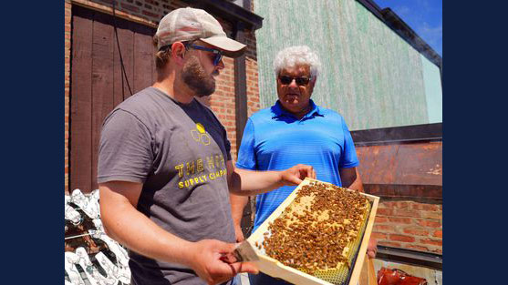 Matt Vaskey of Hive Supply in Pilsen speaks with Andy Smolen of the Franklin Park Public Works Department during their inspection of the hives, Monday, June 14, 2021. | Kevin Tanaka/Pioneer Press (Kevin Tanaka / Pioneer Press)