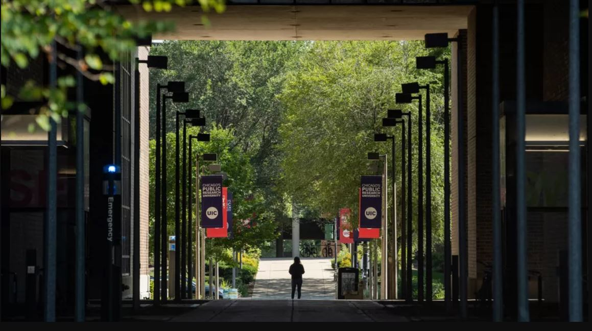 The University of Illinois-Chicago on Wednesday reported its sixth consecutive year of record enrollment, with 33,518 students. Pat Nabong/Sun-Times