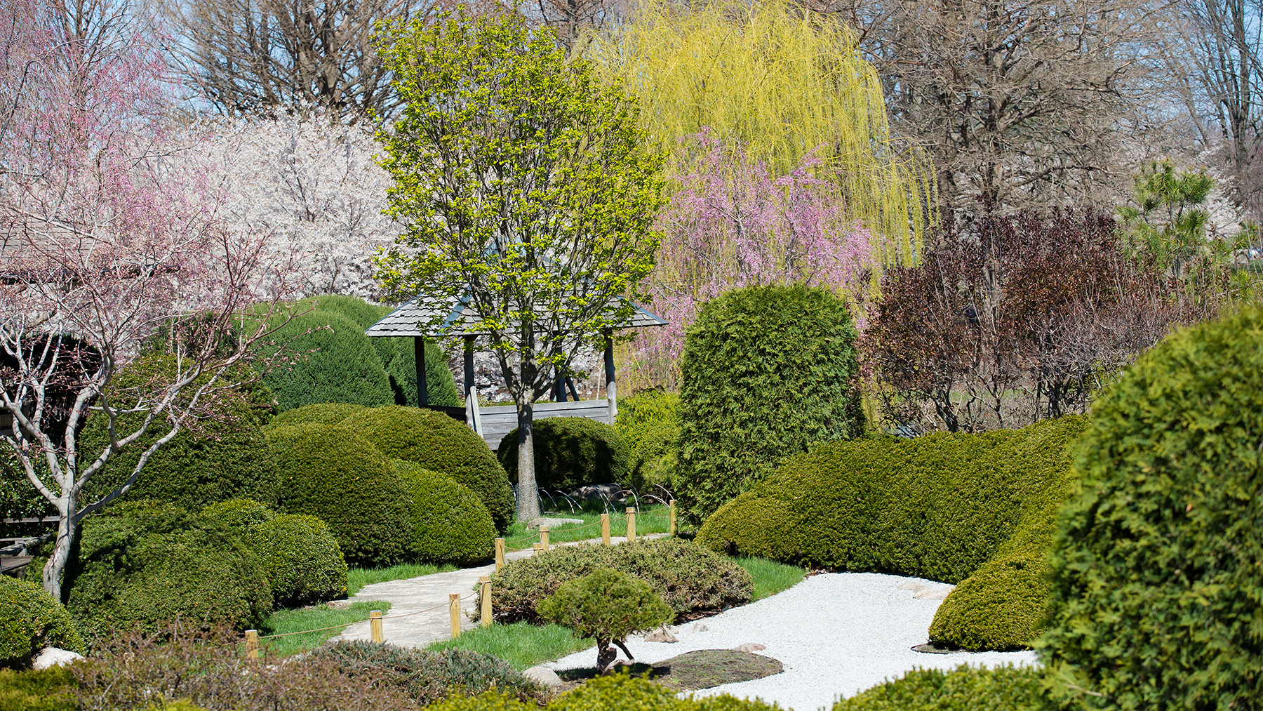 The Dry Garden surrounded by spring foliage.  Photo by Joyce Seay-Knoblauch