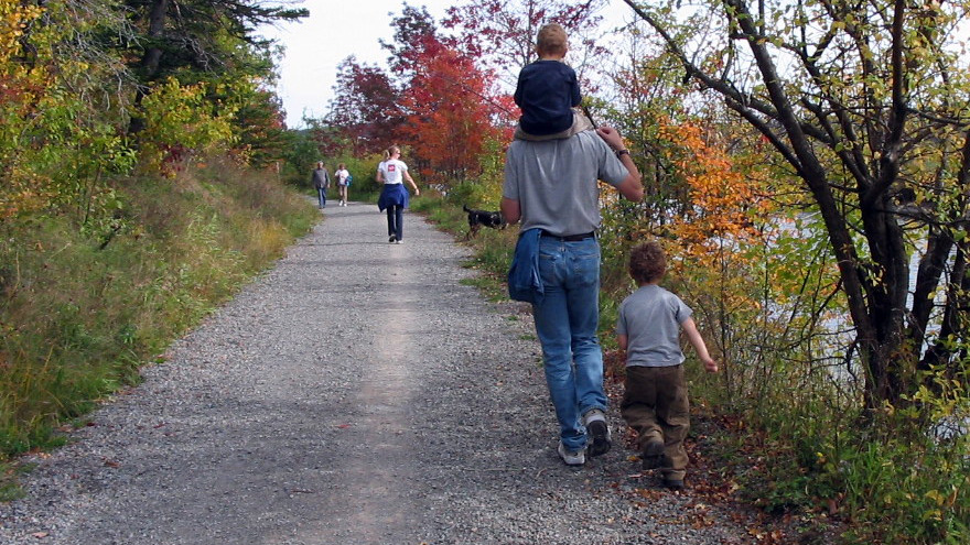 stock image of family walking along wooded path
