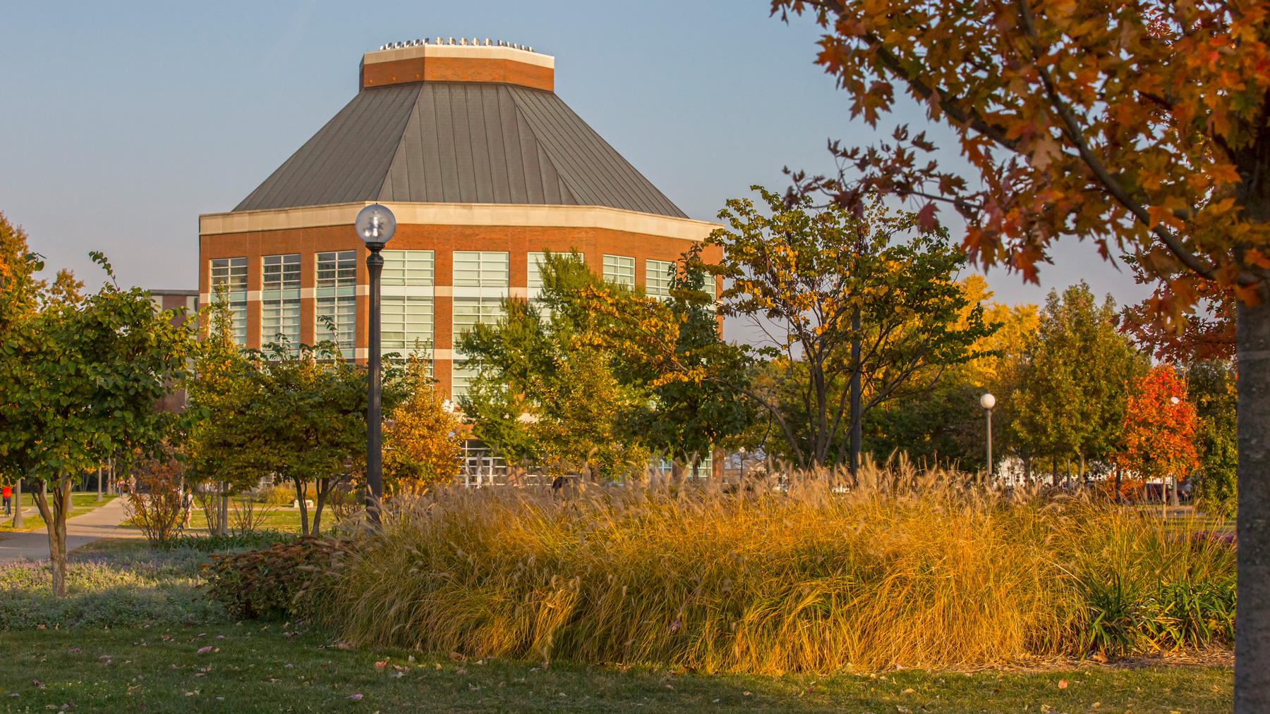 ACES Librarry in Fall. Photo by L. Brian Stauffer