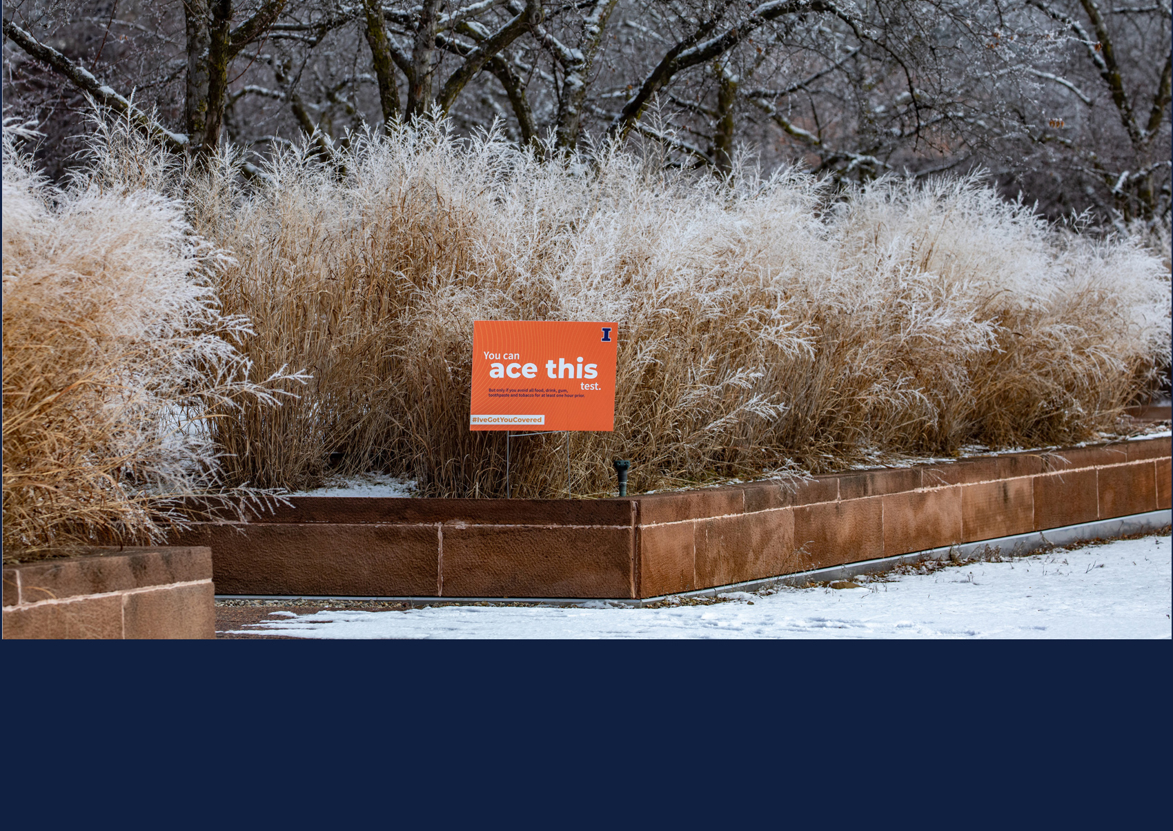 COVID testing sign in a snowy campus setting. Photo by Fred Zwicky