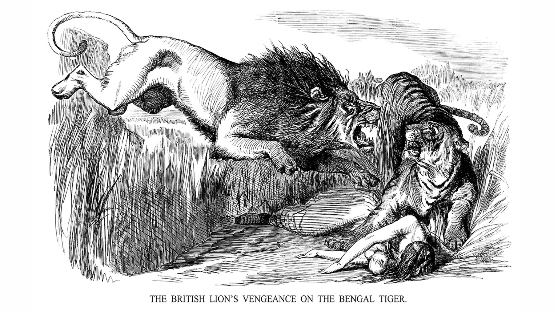"""""""The British Lion's Vengeance on the Bengal Tiger,"""" by John Tenniel, was published during the Indian Mutiny, when India rebelled against British rule. Sketch from Punch, Aug. 22, 1857."""