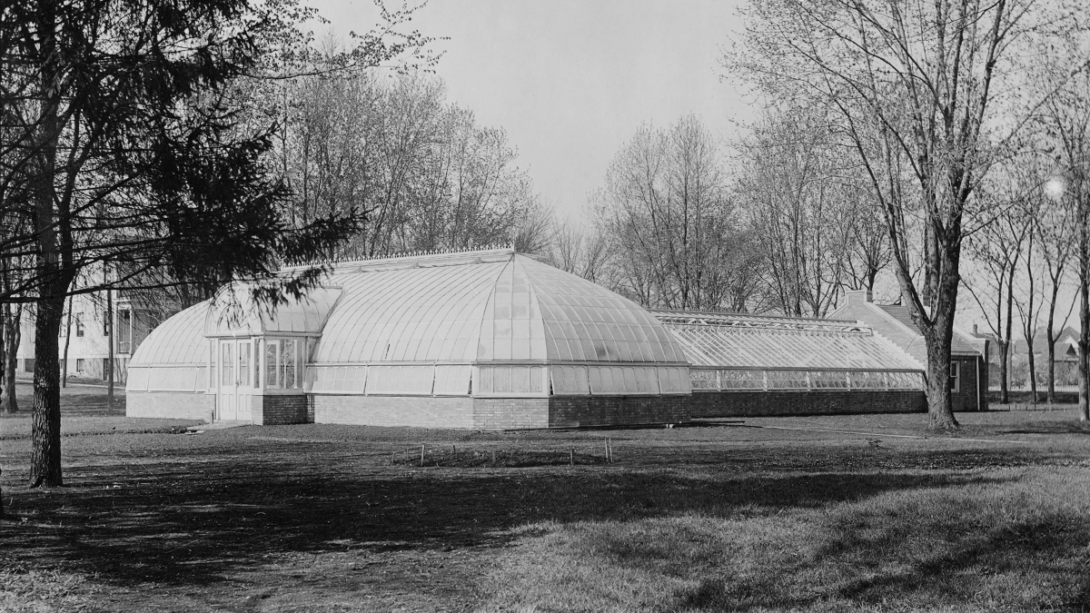 greenhouse just north of the President's House that was located at the corner of Wright and Green streets