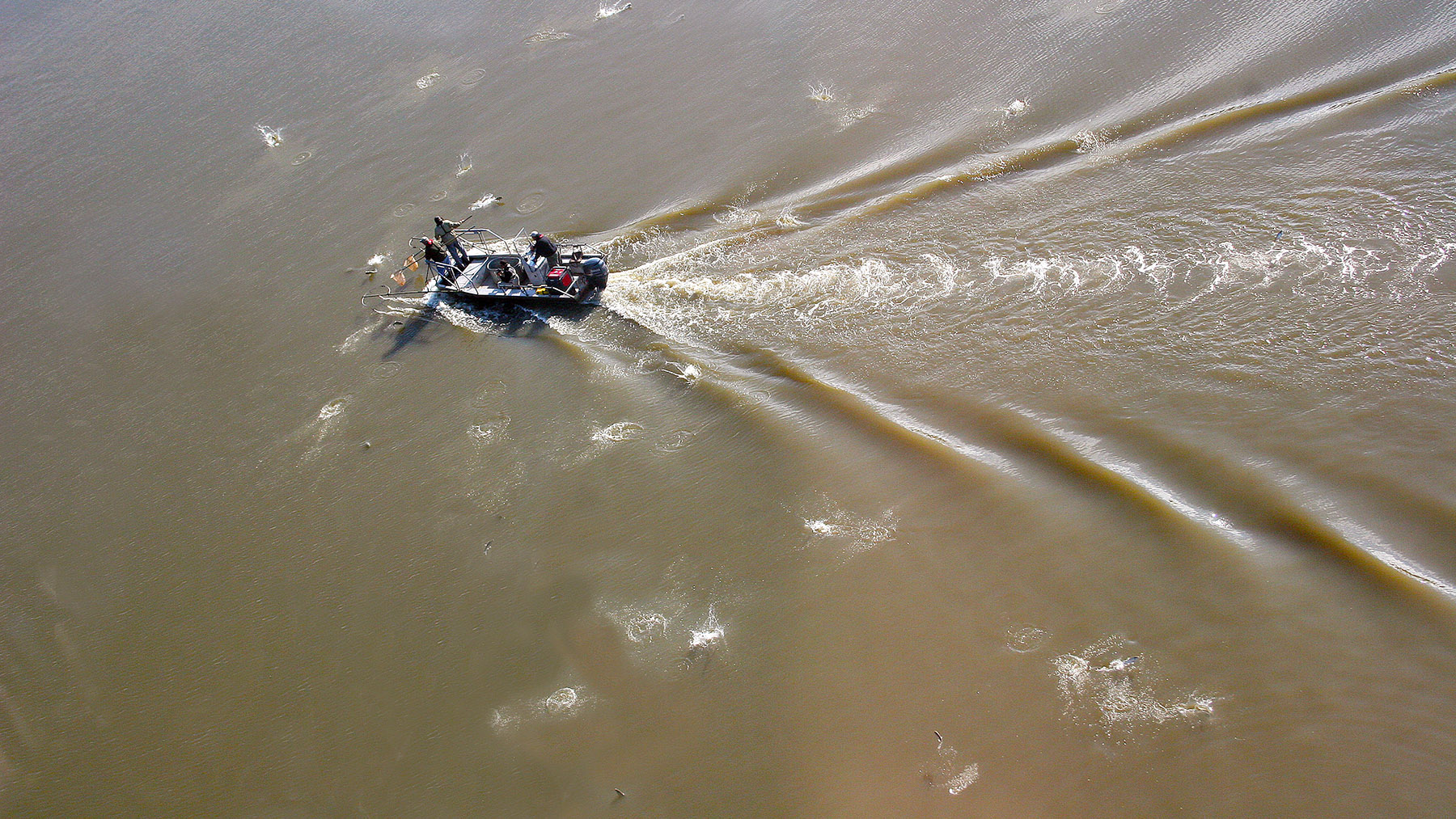 researchers work from a boat on the Illinois River. Photo by Aaron Yetter