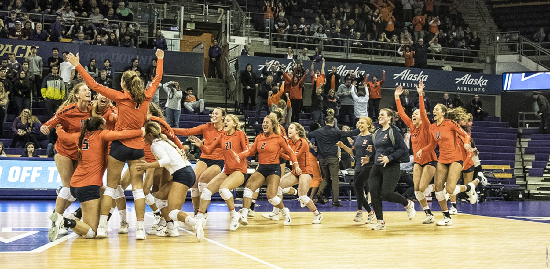 volleyball team members erupt in celebration