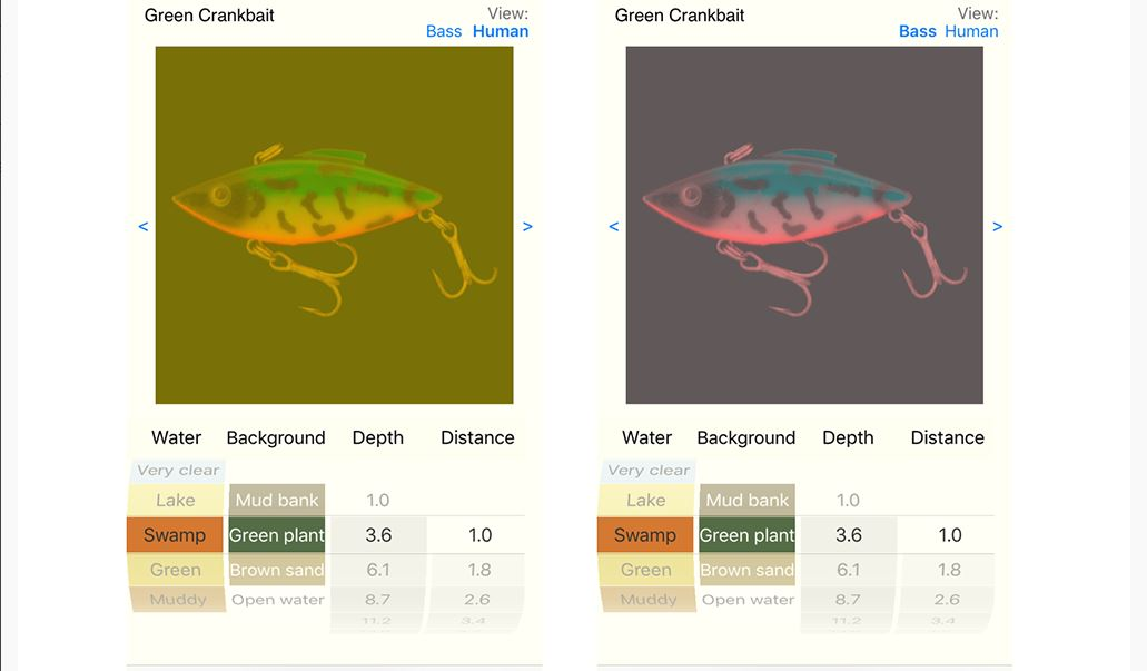 Sample images show how the BassVision app. Image courtesy of Becky Fuller and BassInSight