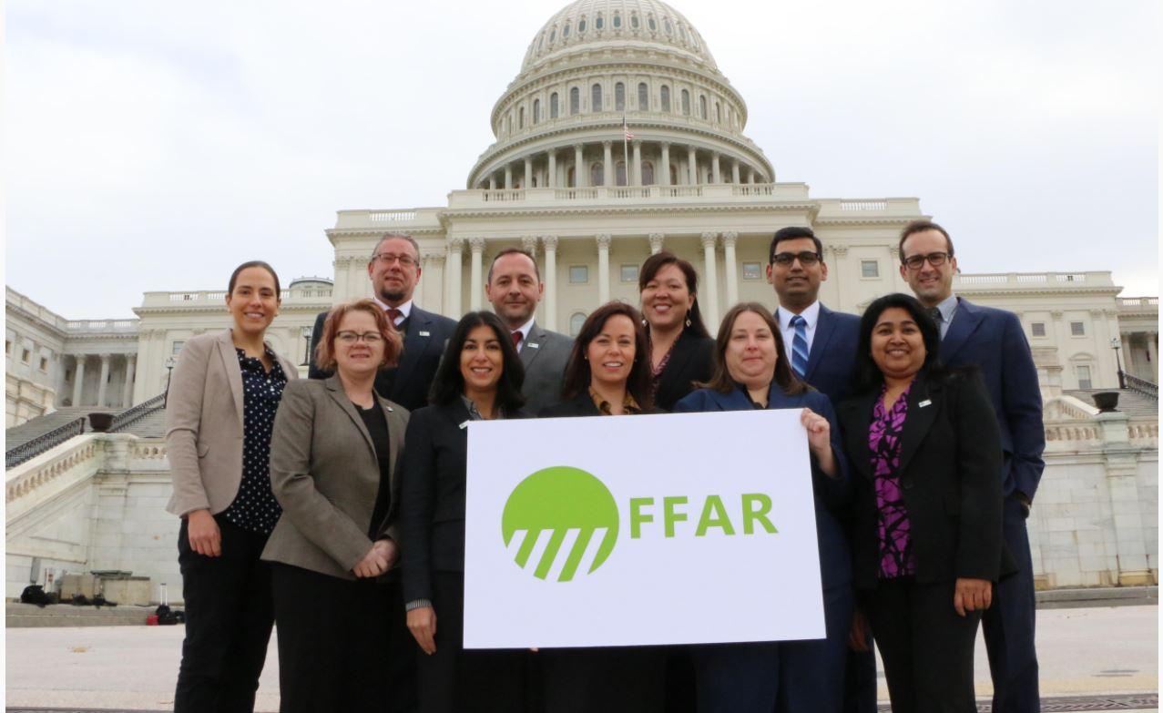 winners of the FFAR awards
