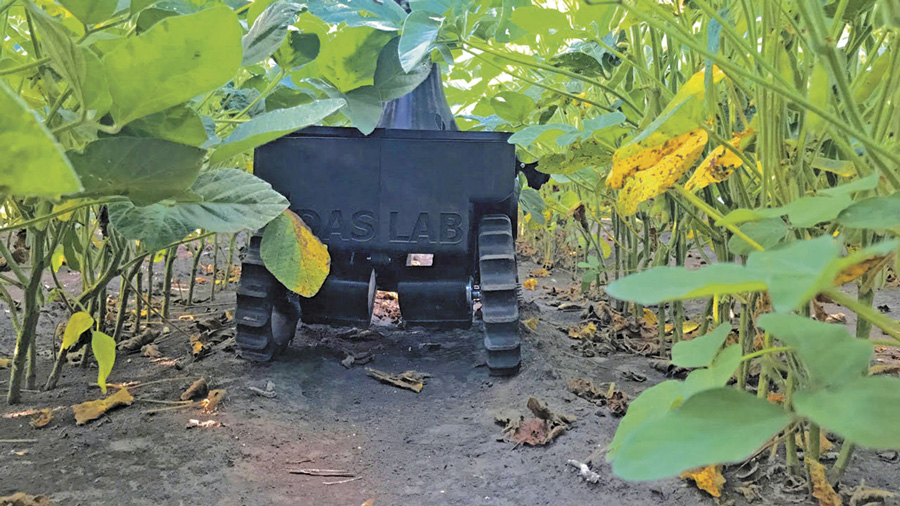 TerraSentia robot gathers crop information while crawling under the canopy of soybeans