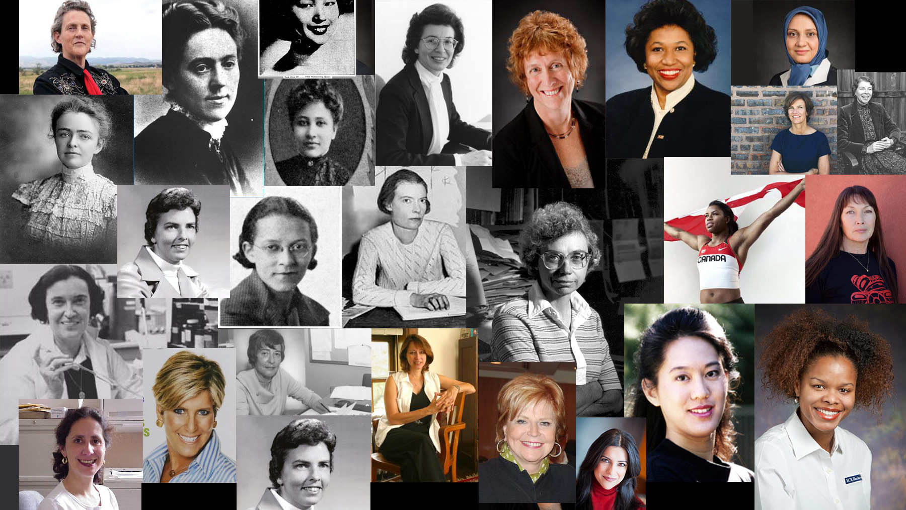composite image of featured women