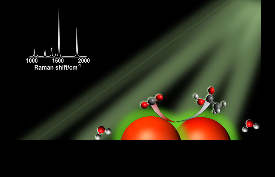 In the right conditions, silver nanoparticles, represented by the large orange spheres, can absorb visible light. Charge carriers produced by light excitation are transferred to CO2 and water, allowing the conversion to hydrocarbons and other multicarbon molecules. In the graphic, carbon atoms are black, oxygen atoms are red and hydrogen atoms are white.  Graphic courtesy D. Devasia/Jain Lab/University of Illinois Urbana-Champaign