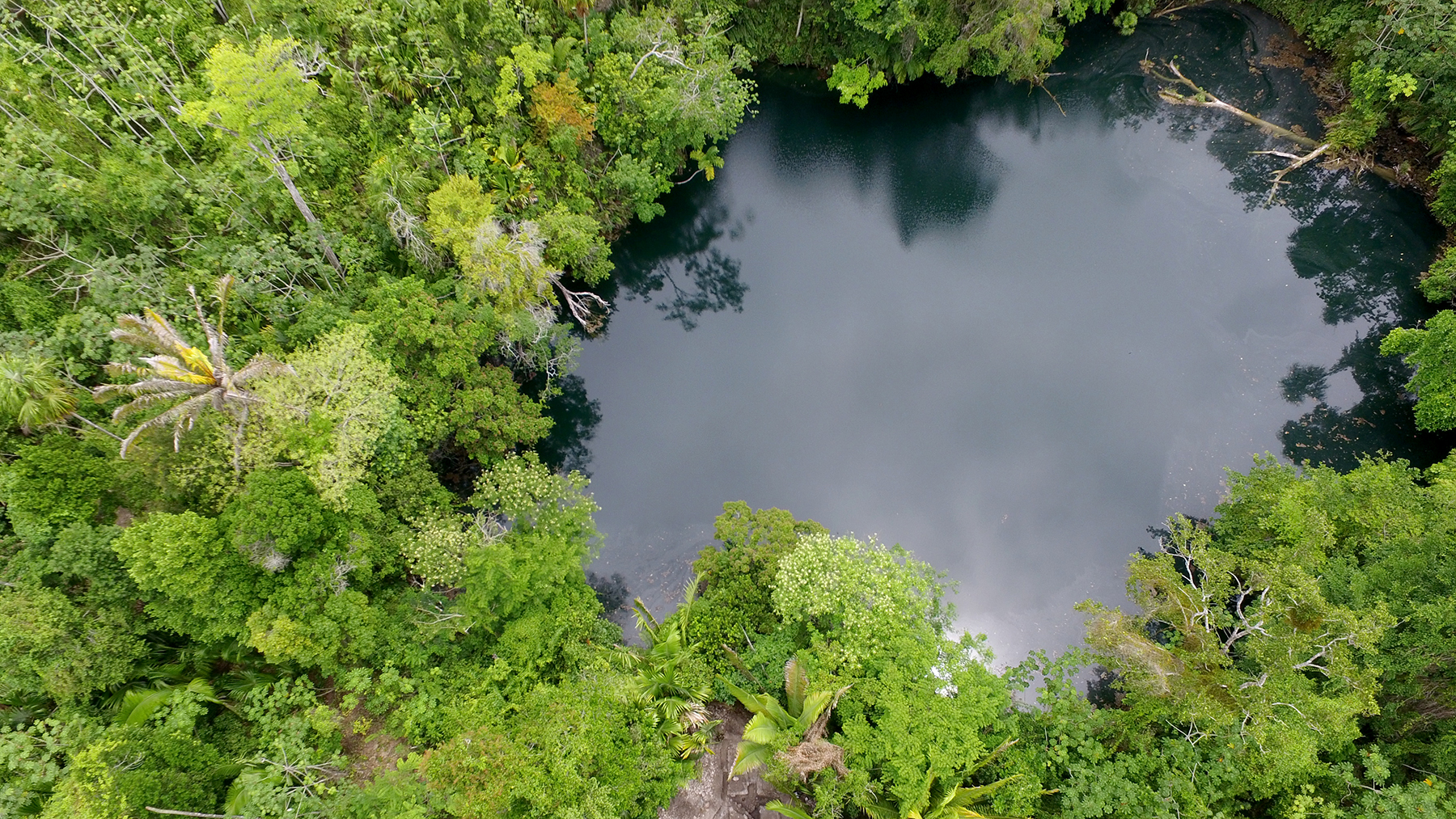 Pools like this were sacred to the Maya, who considered them portals to the underworld.  Drone photo by Jeannie Larmon