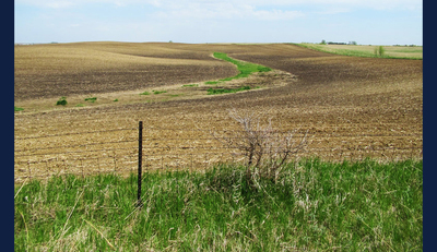 Soil on hilltops in this photo is lighter in color, revealing a loss of fertile topsoil. Photo by Evan Thaler for NPR