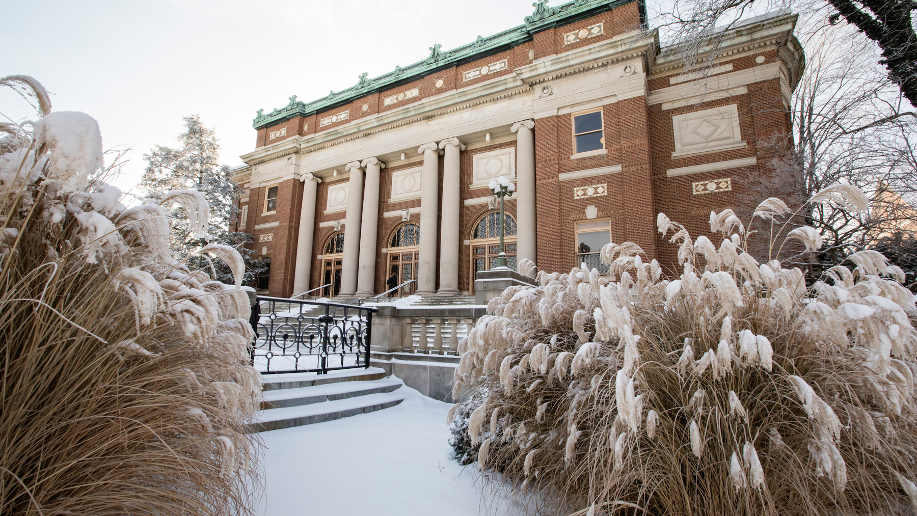 Foellinger Hall with tall grasses covered in snow