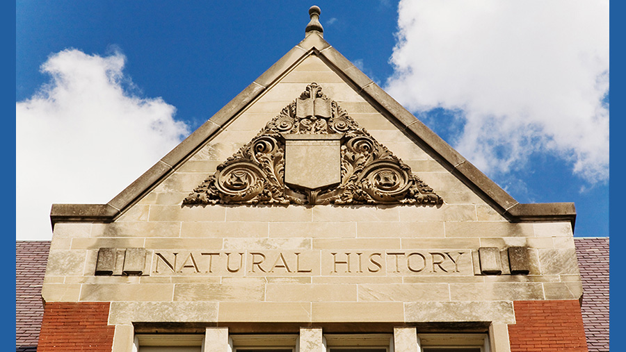 detail of exterior of Natural History Building