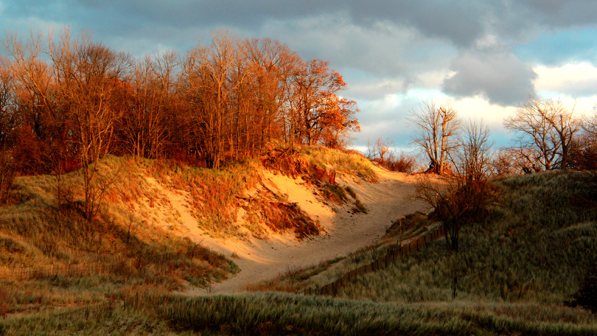 Scene from Indiana Dunes State Park, which sits within the national park Photo by Robert Pahre