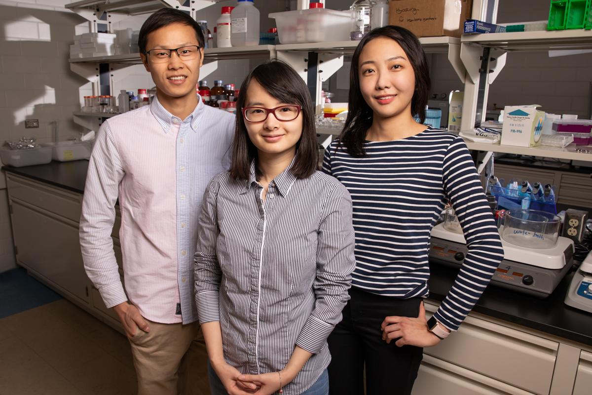 Qian Chen, Binbin Luo and Ahyoung Kim