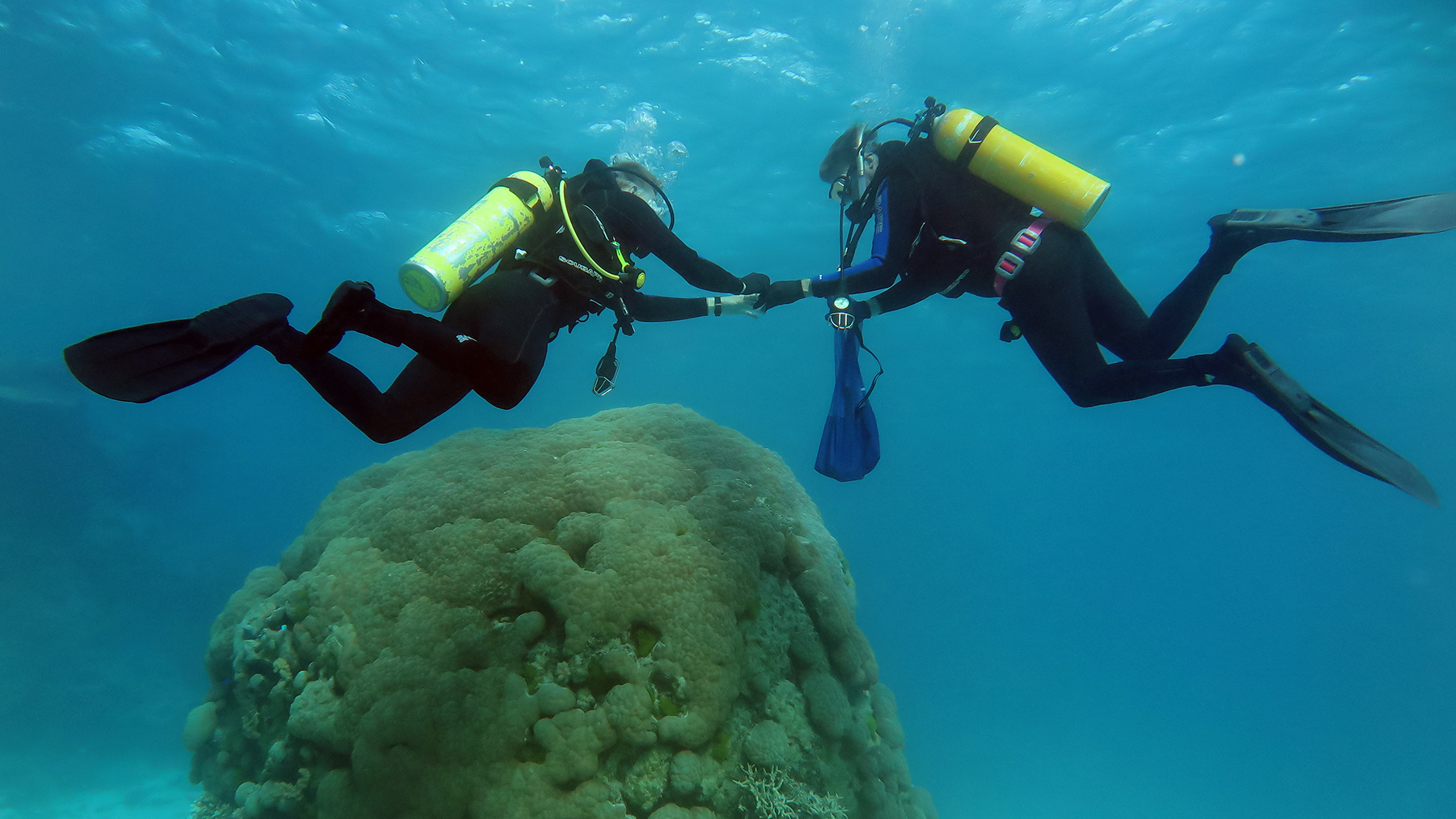 Co-authors Bruce and Kyle Fouke collecting Porites biopsy samples at 10 meters depth at Myrmidon – the most seaward reef of the Great Barrier Reef, located 124 km off the coast of northeastern Australia. Photo courtesy of Bruce Fouke
