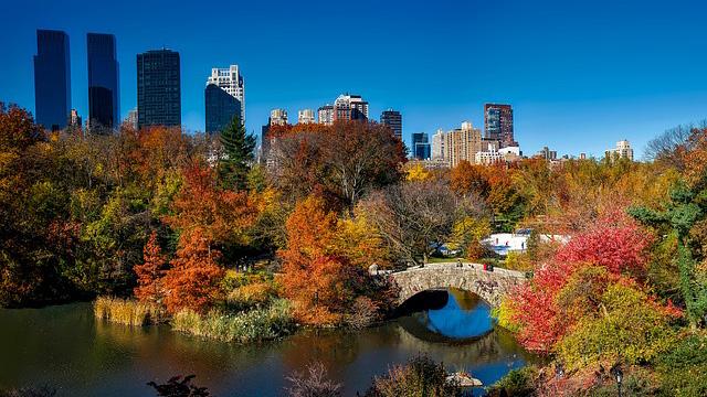 New York's Central Park. Stock photo provided.
