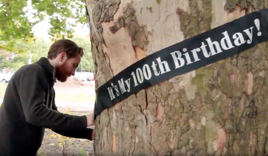 man ties sash around a tree that says 'it's my 100th birthday'