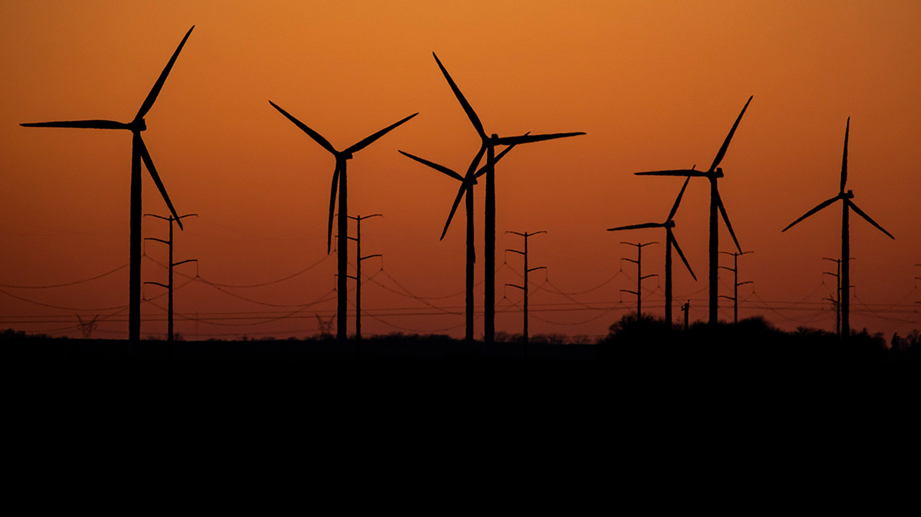 turbines and power poles in the orange sky of early morning light.  Photo by Fred Zwicky