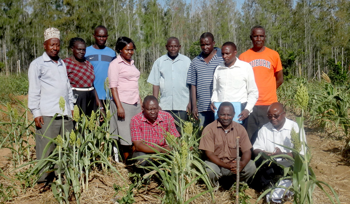 farmers learn how to grow their crops sustainably. Photo courtesy Esther Ngumbi.