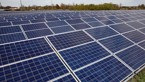 University of Illinois Solar Farm. Photo by L. B. Stauffer