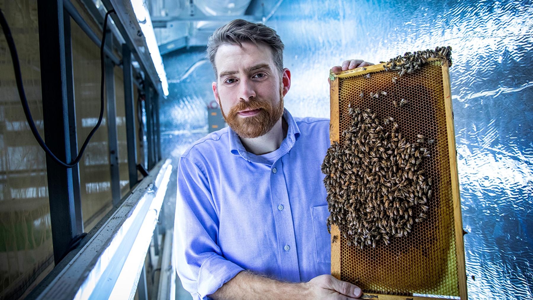Entomology professor Adam Dolezal.  Photo by Fred Zwicky