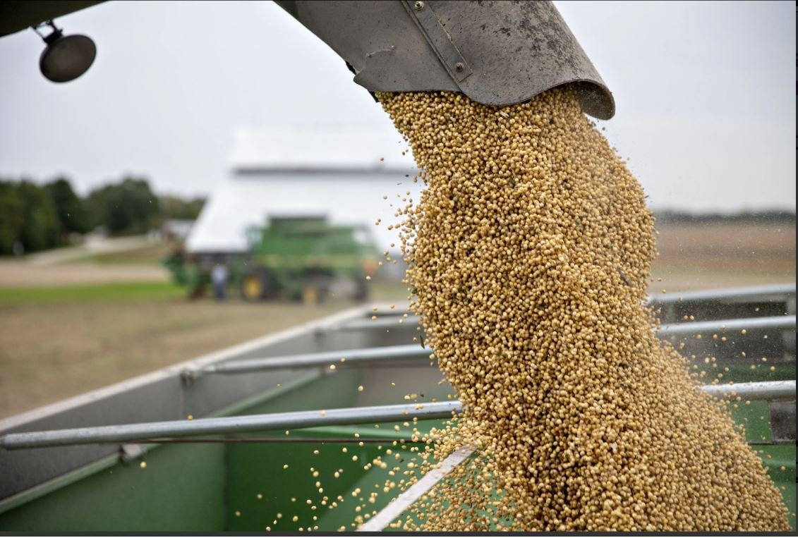 grain flows from combine to bin. Photo credit: Bloomberg