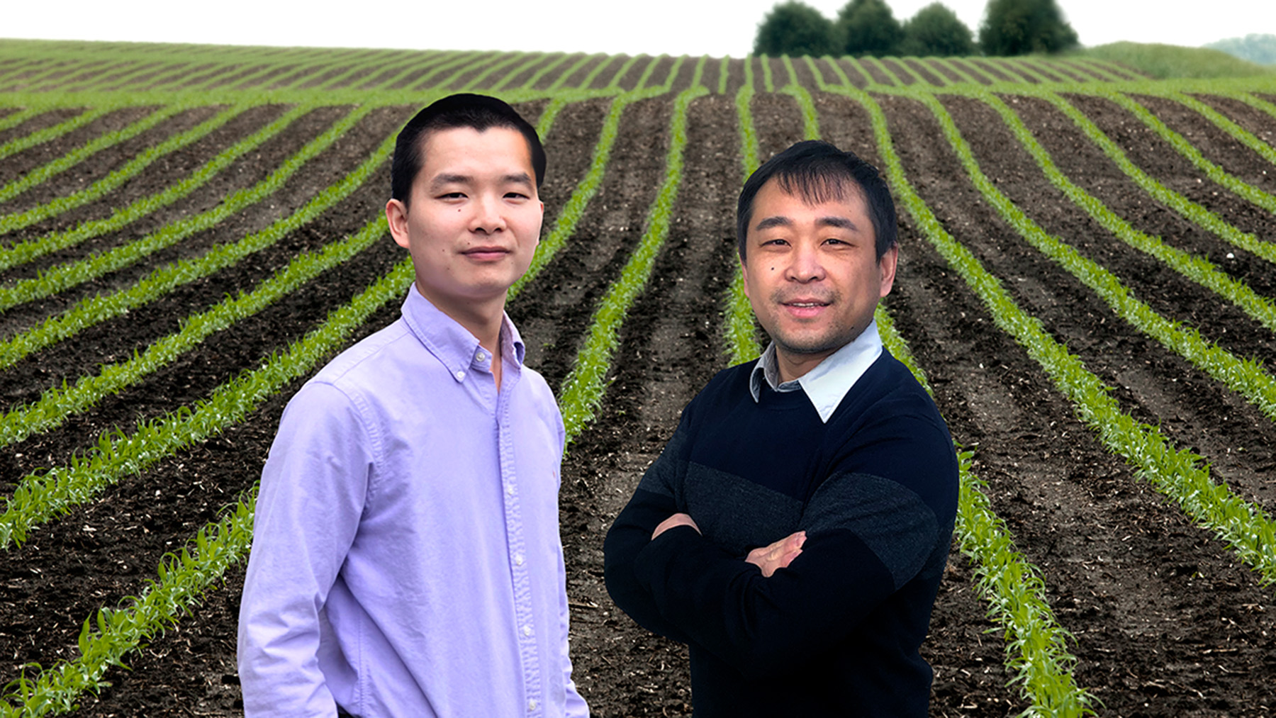 Researchers Bin Peng, left, and Kaiyu Guan led a large, multi-institutional study that calls for a better representation of plant genetics data in the models used to understand crop adaptation and food security during climate change.  Photo illustration by Fred Zwicky
