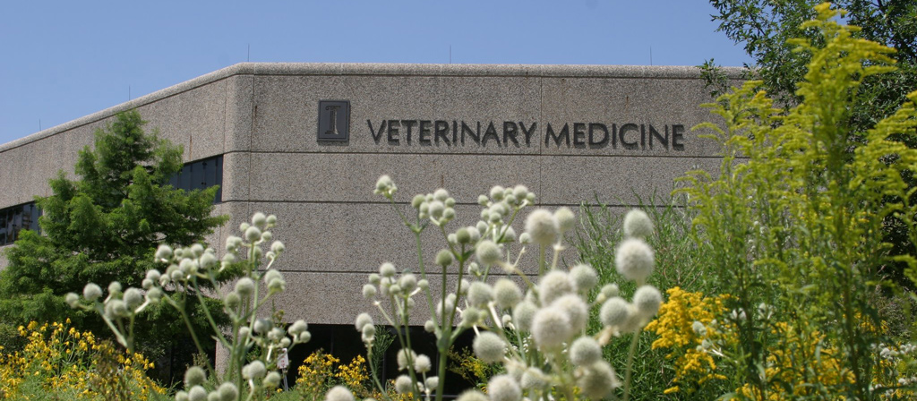 Veterinary Medicine building at Illinois with prairie plants in the foreground