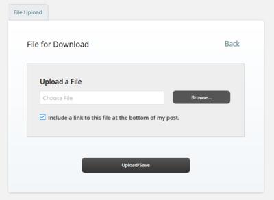 Upload a File field