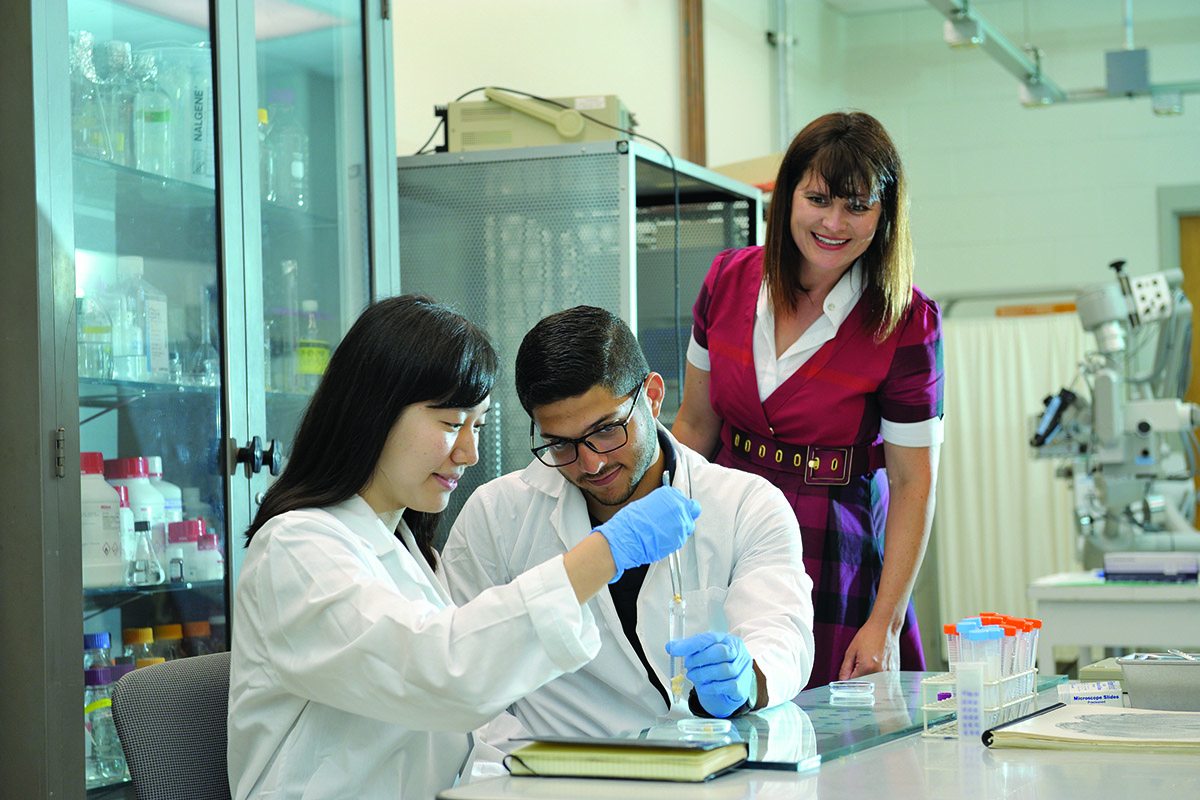 At right, Catherine Best, a research professor of bioengineering, supervises students, including REU participant Javier de Jesus Astacio, center, who is studying mechanical engineering at the University of Puerto Rico, Mayaguez, and Yujin Lee, an Illinois junior in bioengineering.