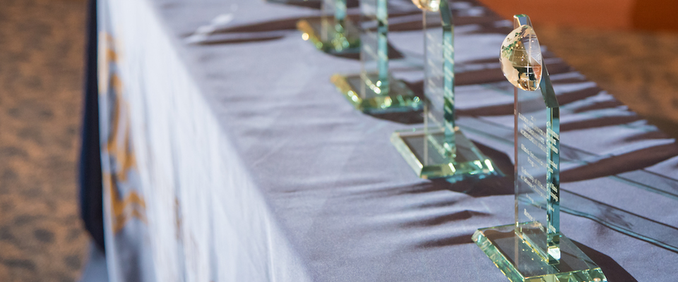 international achievement awards display with shining light and shadow