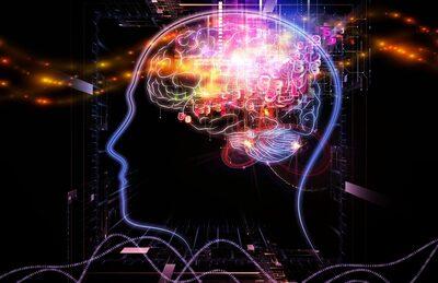 Digital image of a human brain