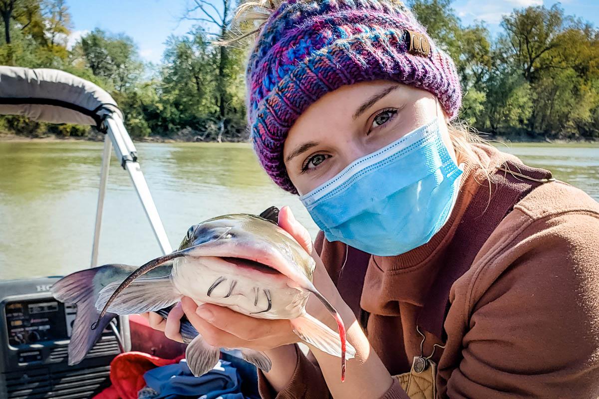 channel catfish barbels