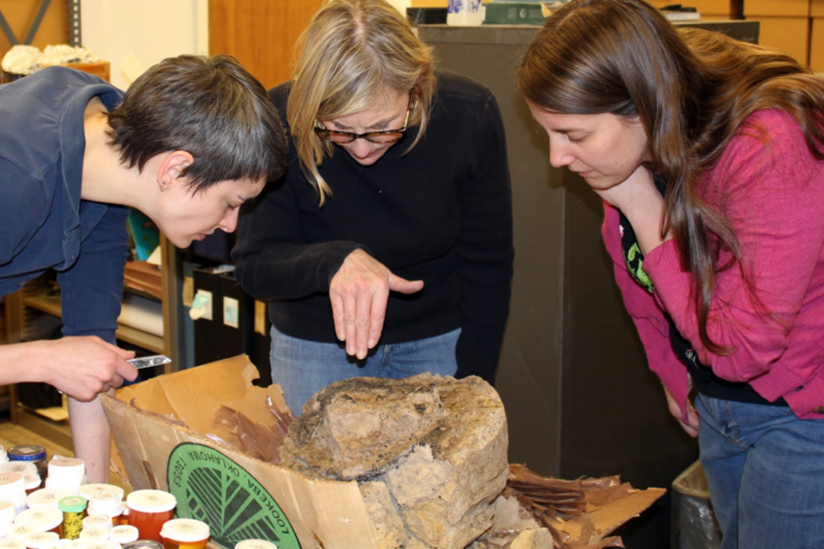 Mary King, Mary Simon, and Kimberly Schaefer examining a possible wooden mortar