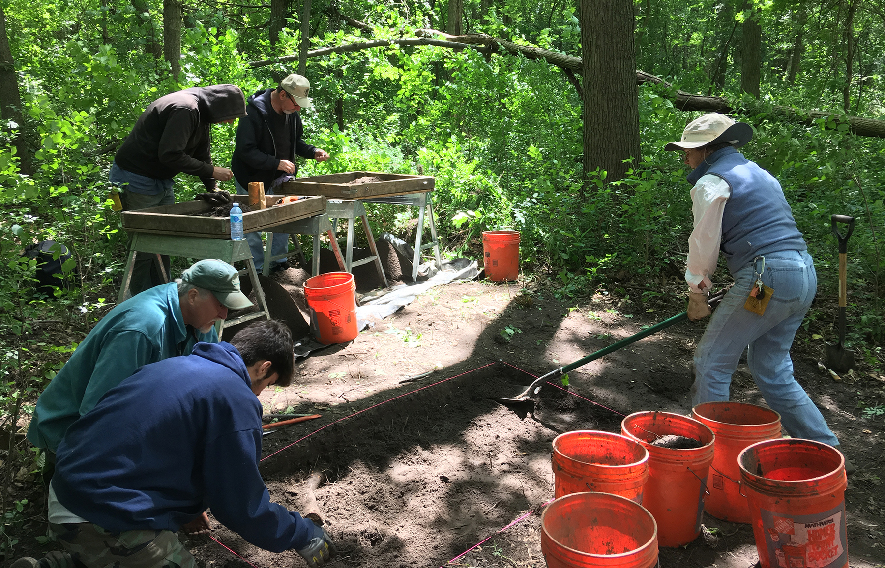 ISAS staff and volunteers work at a site in the Forest Preserves of Cook County