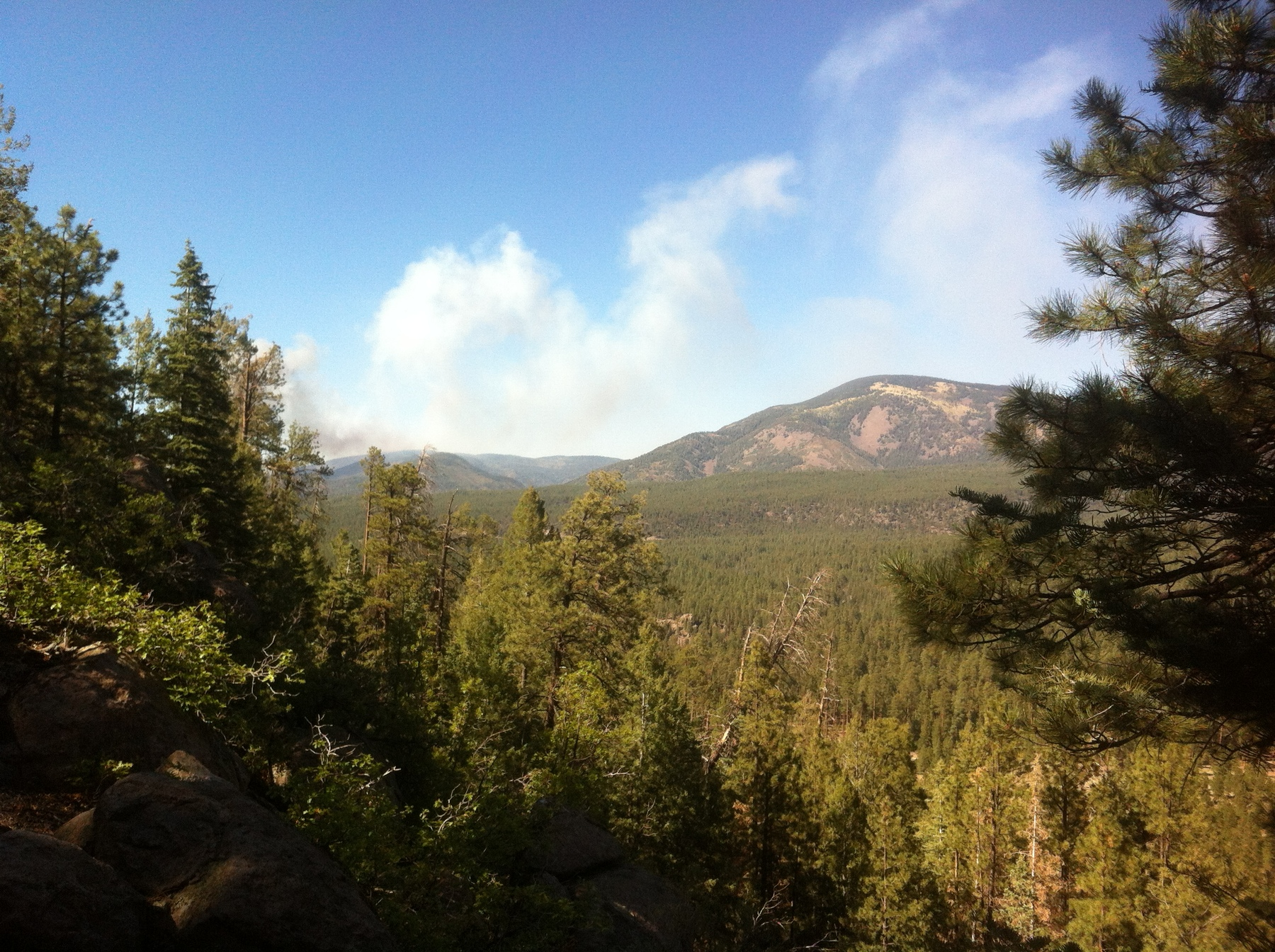 Smoke from May 31, 2013, the first day of the Thompson Ridge fire in the Jemez Mountains, New Mexico. This fire grew to an area of over 23,000 acres and engulfed much of Wâavêmâ (Redondo Peak), a mountain held sacred by the people of Jemez Pueblo.