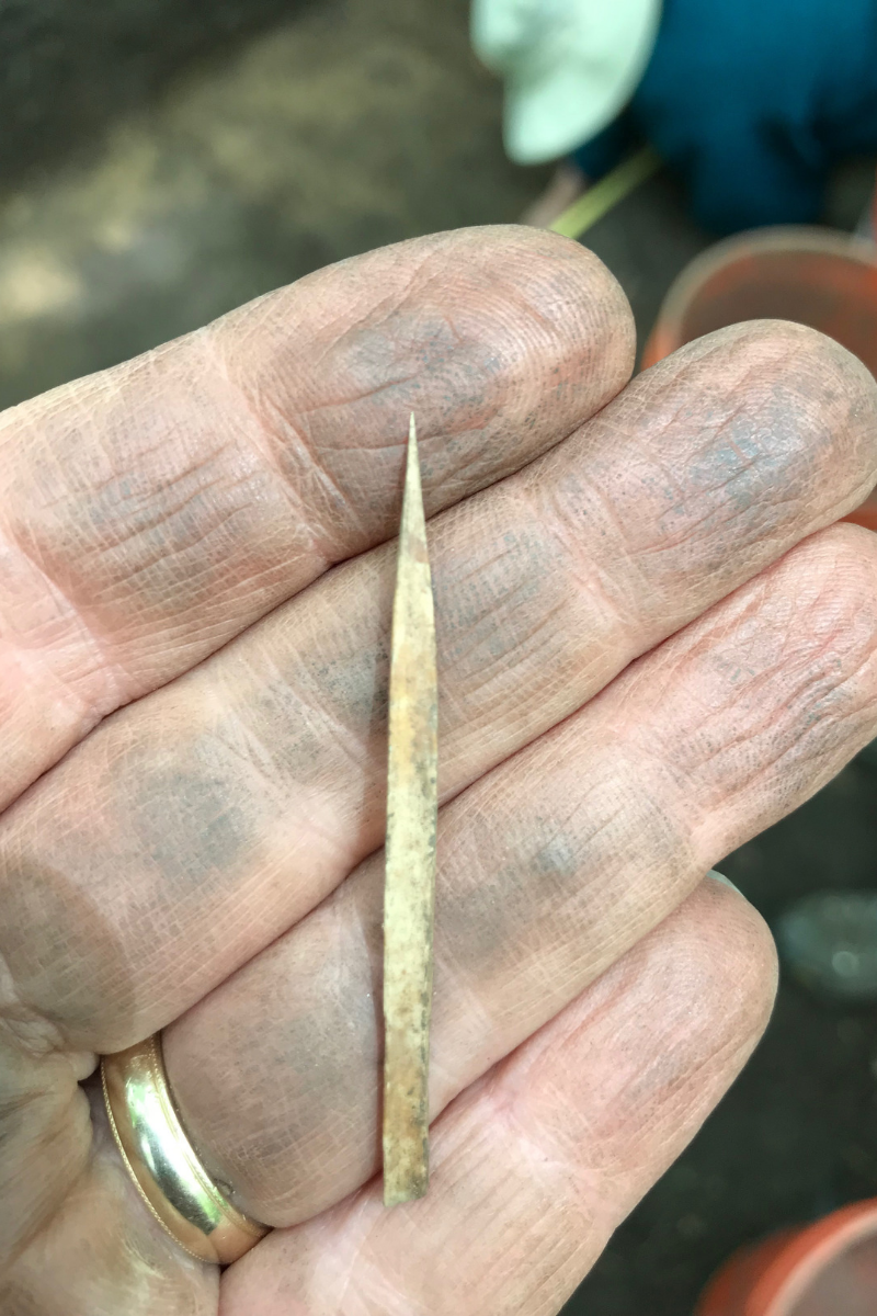 bone needle on dirty palm