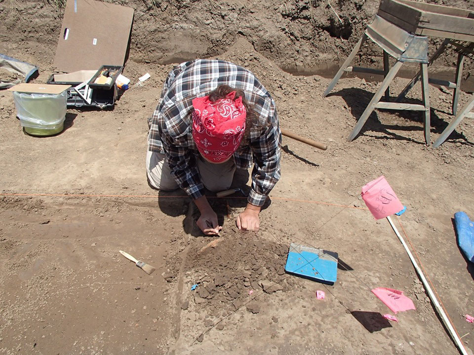 A staff member from the ISAS Western Illinois Field Station recovering a fragment of terminal Late Woodland pottery.