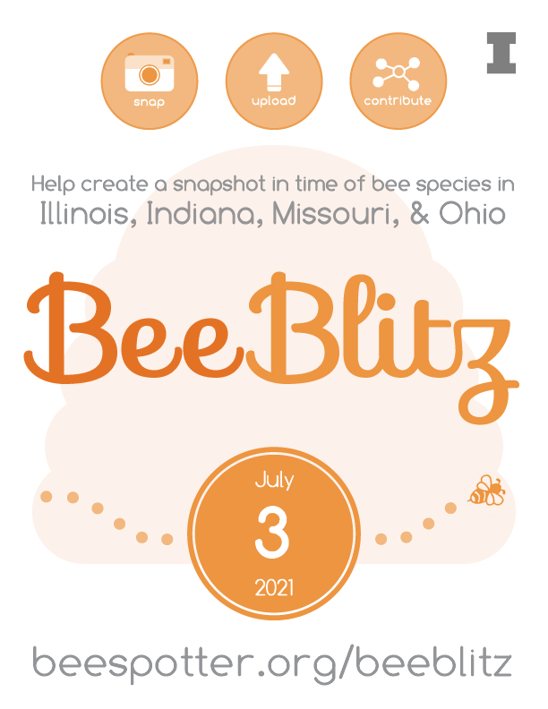 BeeBlitz flier: on July 3, 2021, help create a snapshot in time of bee species in Illinois, Indiana, Missouri, and Ohio
